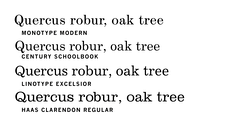 Computer Modern is based on late-1800s Didone type. Its direct inspiration, Monotype Modern, is at top; similar typefaces of the era included Century, Excelsior and Clarendon.